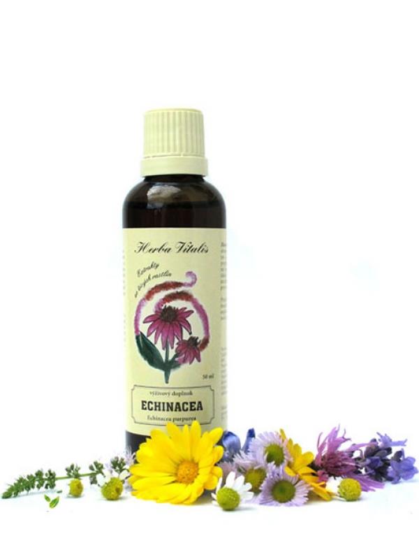 Tinktúra, kvapky z byliny Echinacea purpurová HERBA VITALIS 50 ml
